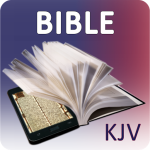 top 6 Best Bible Apps for Android